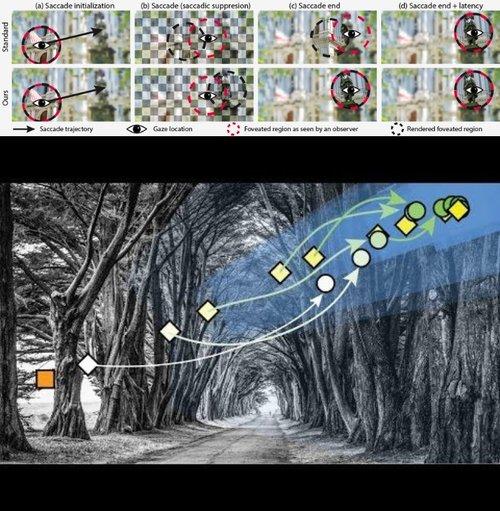 視線追跡において次見る場所を予測し低遅延で中心窩レンダリングする新提案