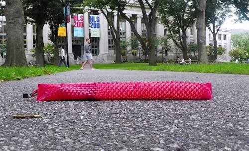 蛇に触発された切り紙を用いたソフトロボット