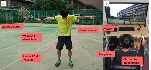 動画に含まれる画像や音からニューラルネットワークを用いて適切な触覚情報を推定するモデル