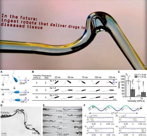 血管内も通過する細菌をモデルにしたマイクロロボット
