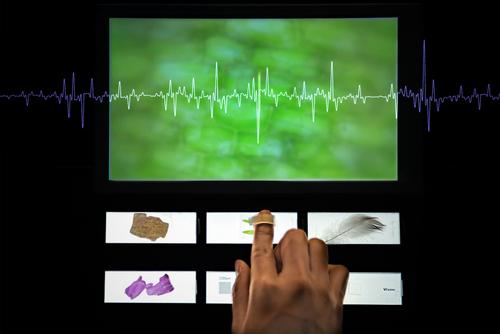 指先が顕微鏡になる装置