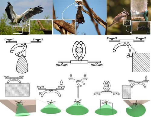 鳥やコウモリのように平らでない場所(木の枝や建物の端など)で止まって休息できる「かぎ爪」付きドローンシステム