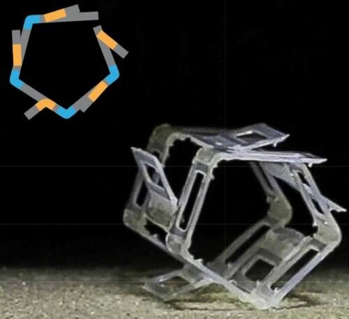 温度変化で動く外部電源などに依存しない折り畳み式ソフトロボット